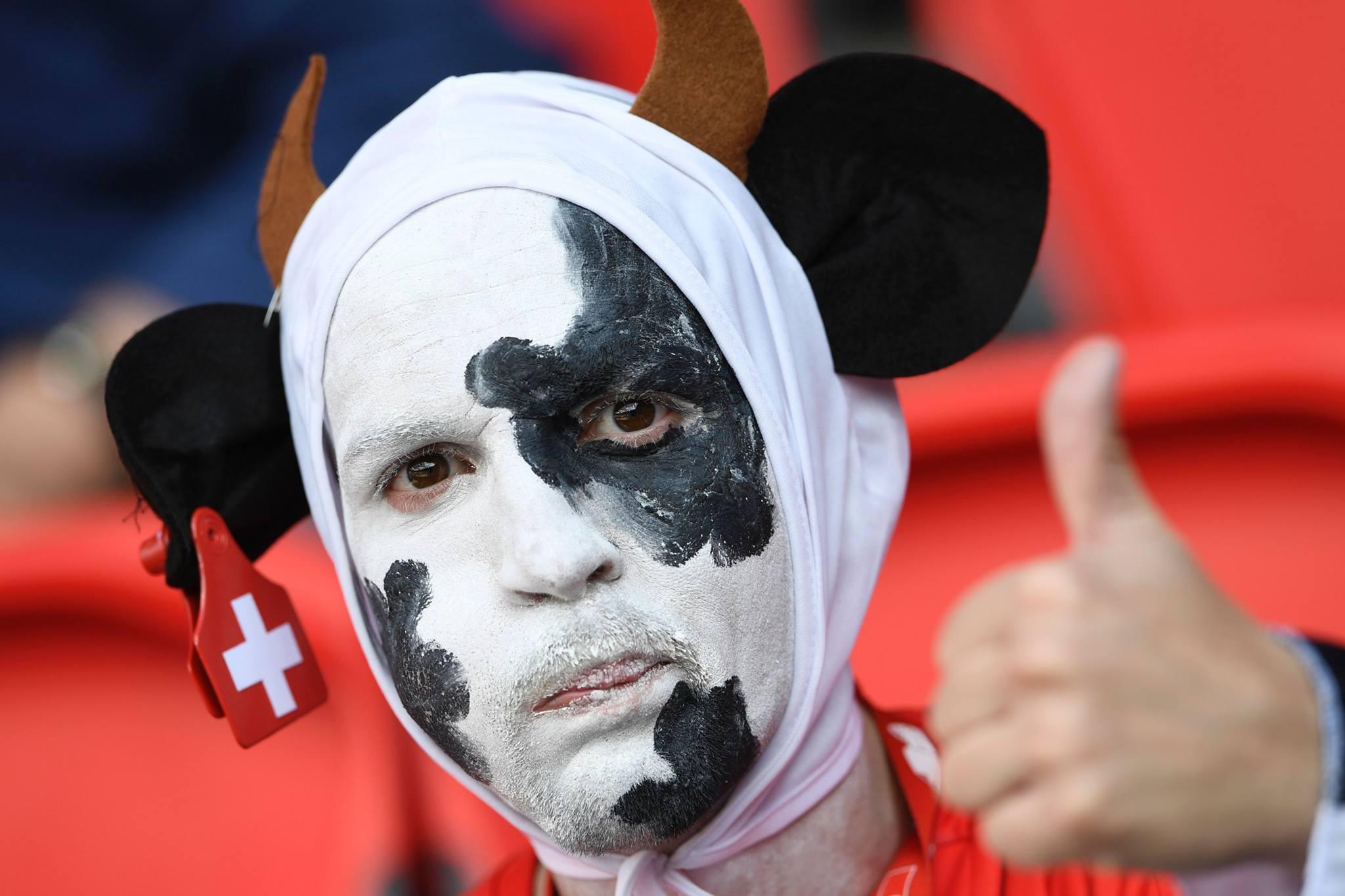 Fans Zwitserland